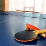 1361445905_nastolnyy-tennis